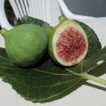 Cukorbetegség ellen: füge